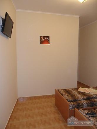 Apartment in Lviv near the center, Monolocale (26434), 003