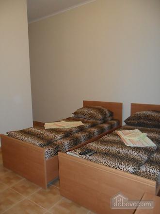 Apartment in Lviv near the center, Monolocale (26434), 004