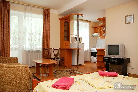 Business class apartment in Pechersk district , Studio (65612), 005