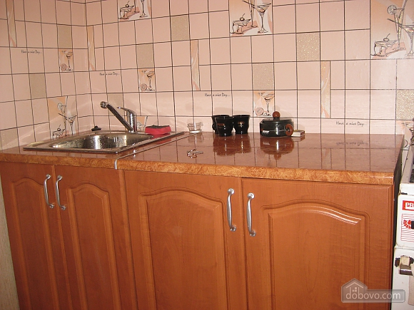 Apartment in Truskavets, Studio (10952), 002