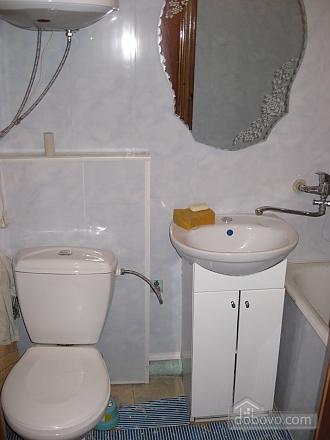 Apartment in Truskavets, Studio (10952), 005
